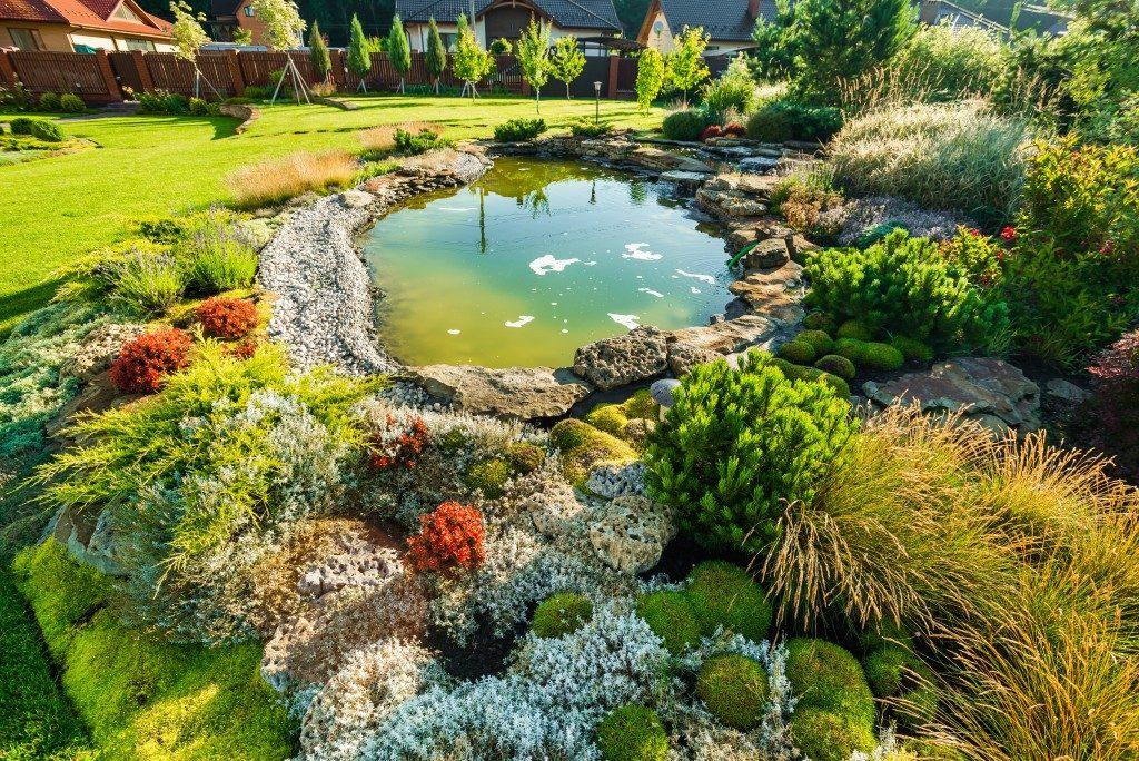 small garden lagoon