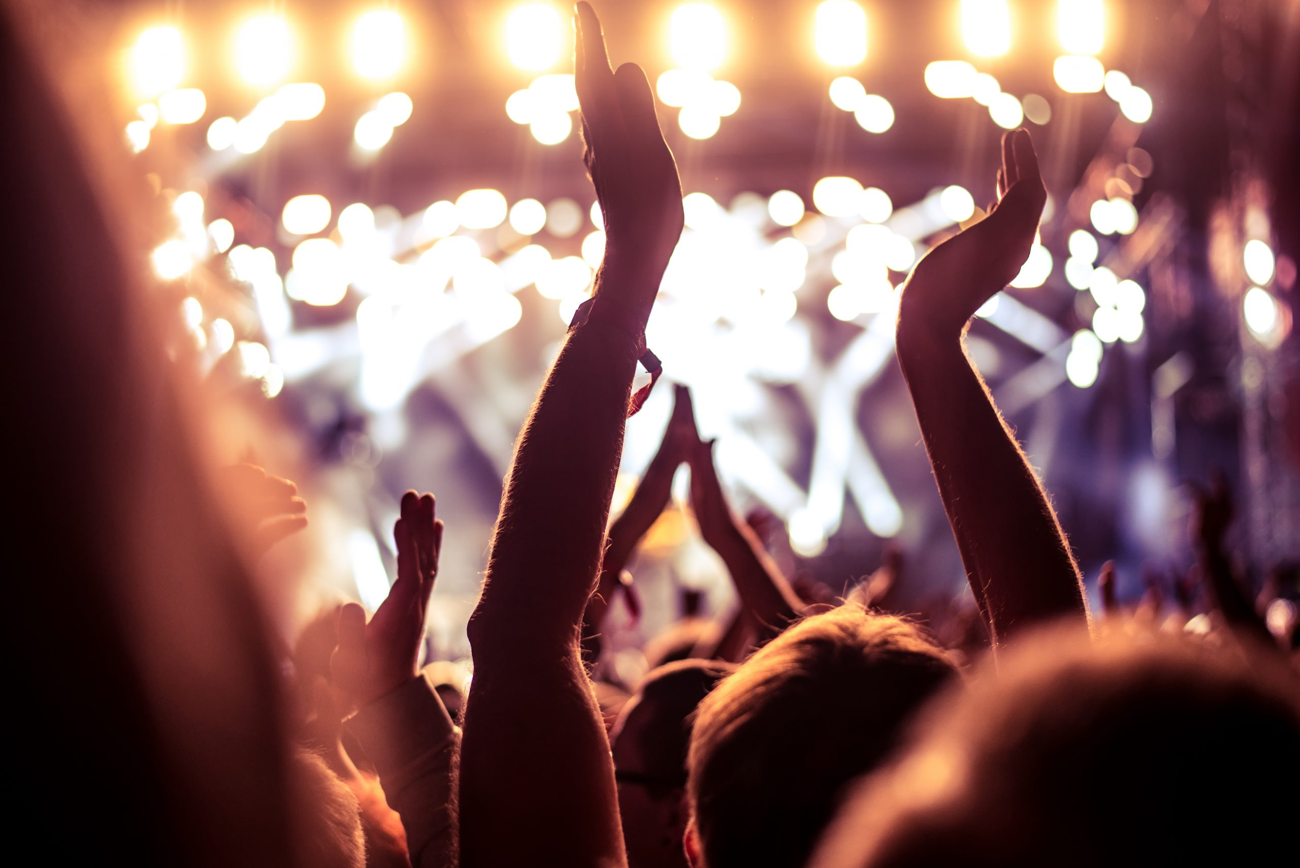 lively concert