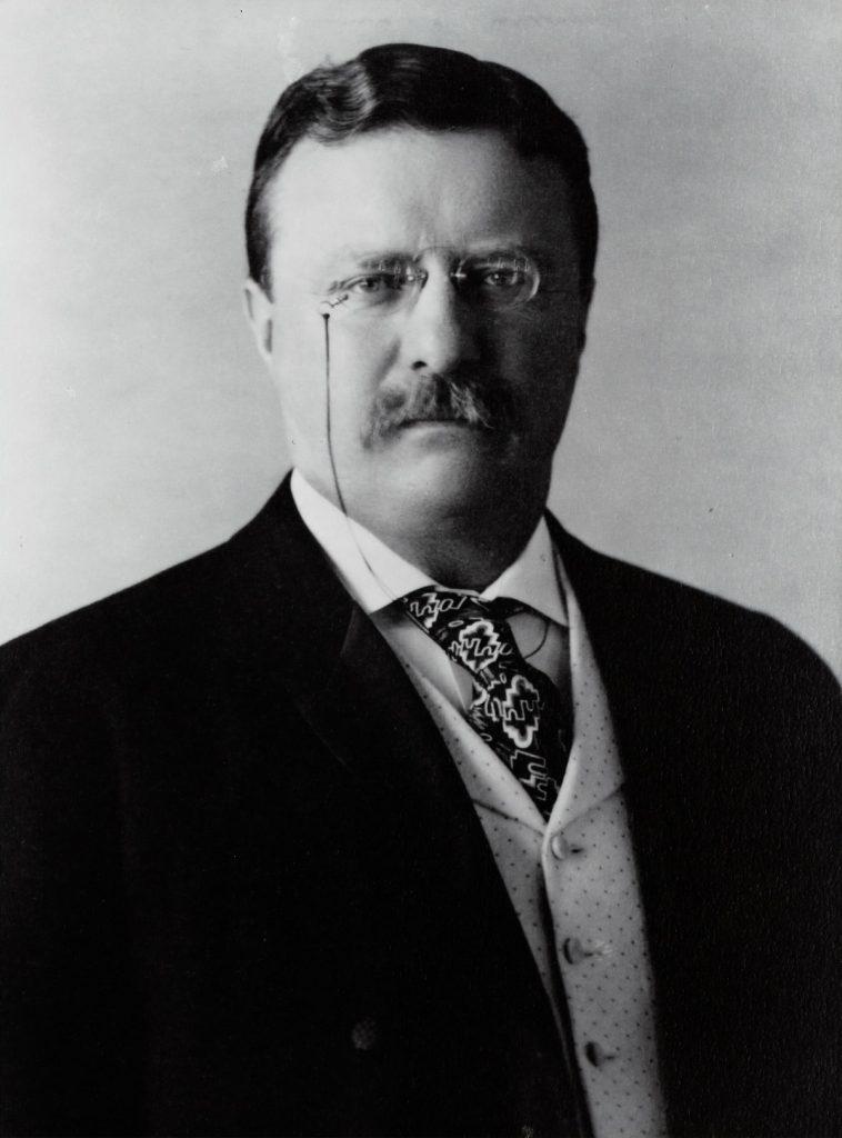 theodore roosevelt mustache